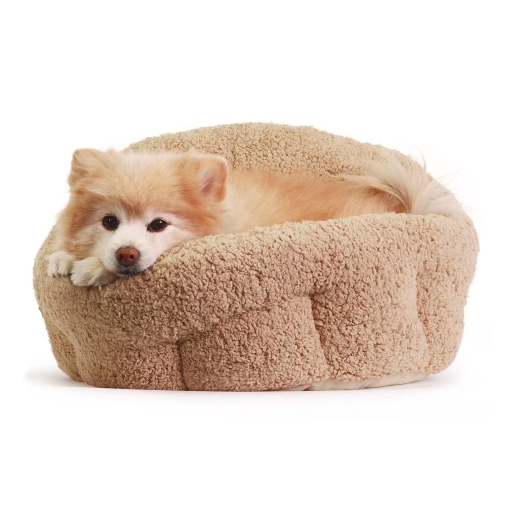 機能|抗菌防臭加工や保温性に優れたもので寝心地の良いものを