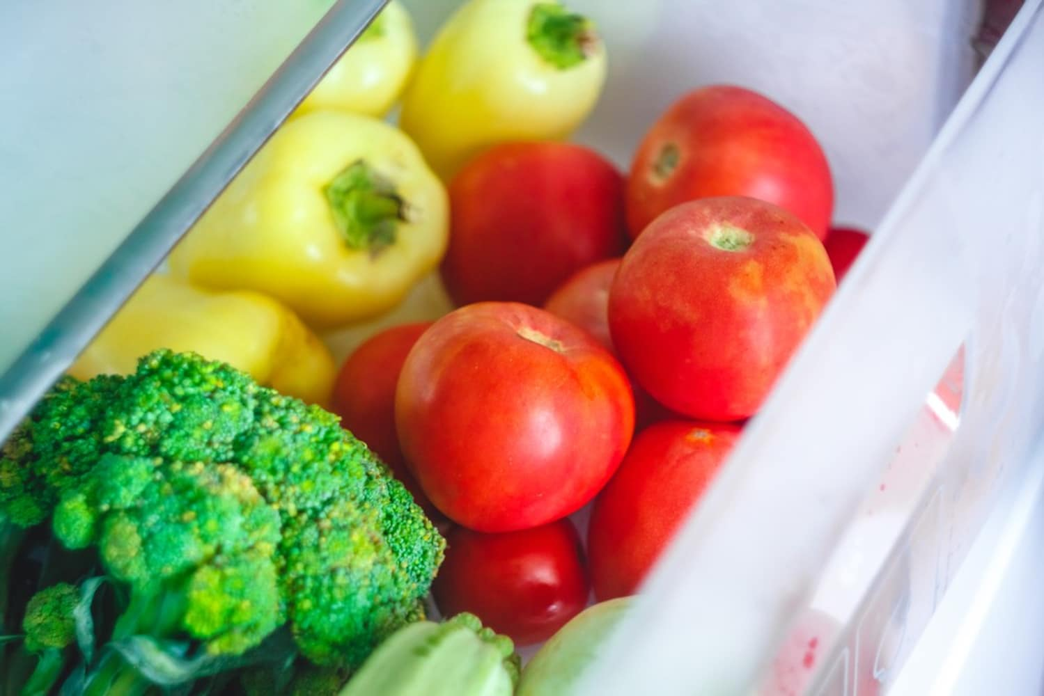 冷蔵庫の各スペース|チルド室・野菜室・冷凍室の機能をチェック