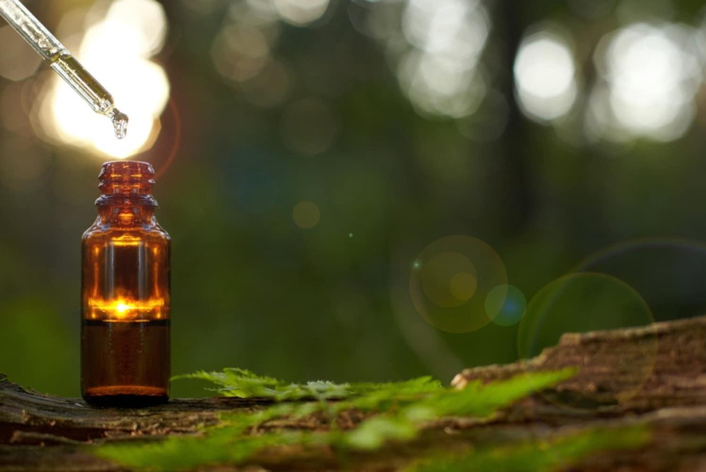 アロマオイル|害虫の敵!ヒバ油でコバエ、ゴキブリ、ダニ対策