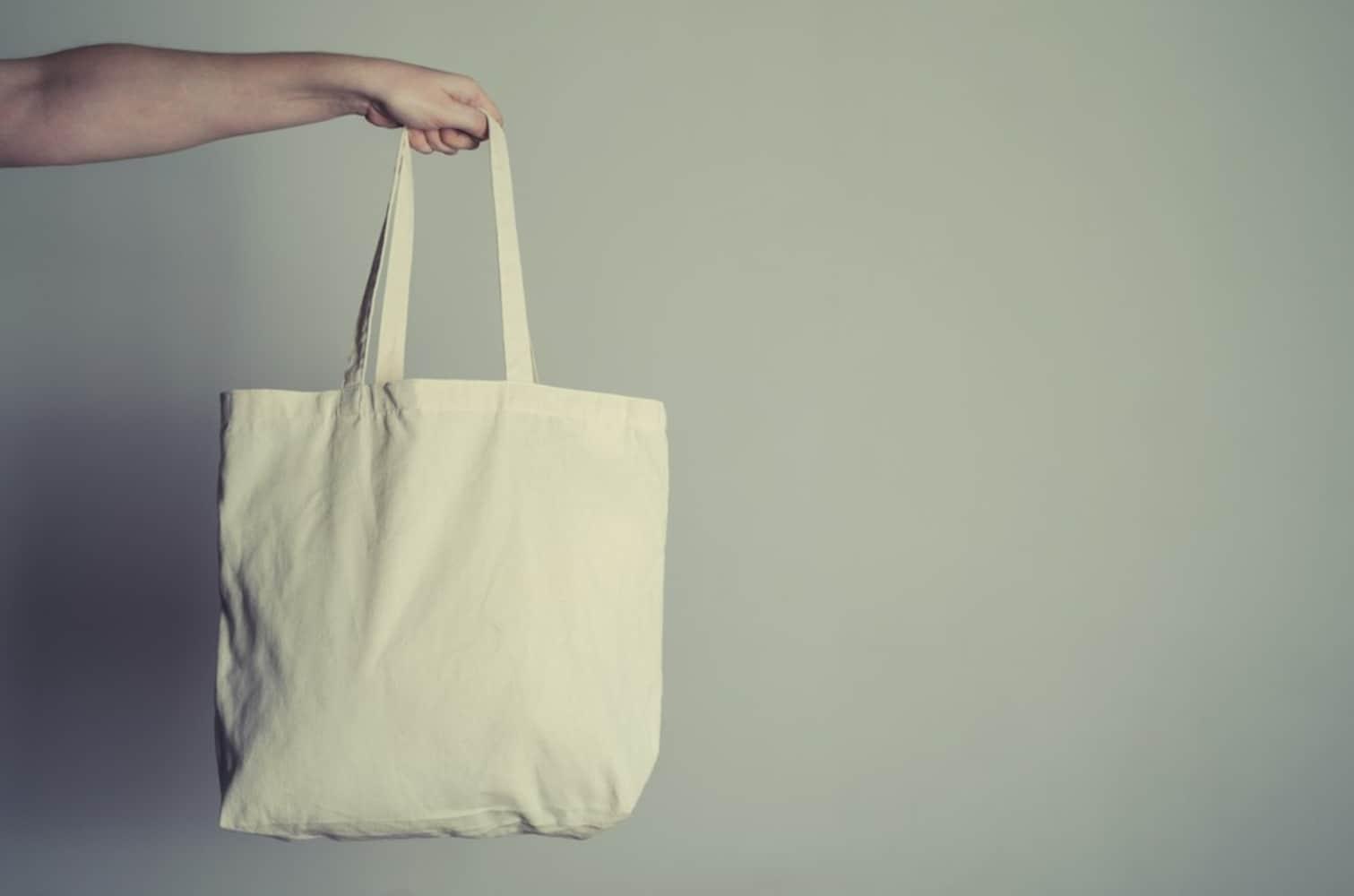 バッグを持ち運ぶ女性