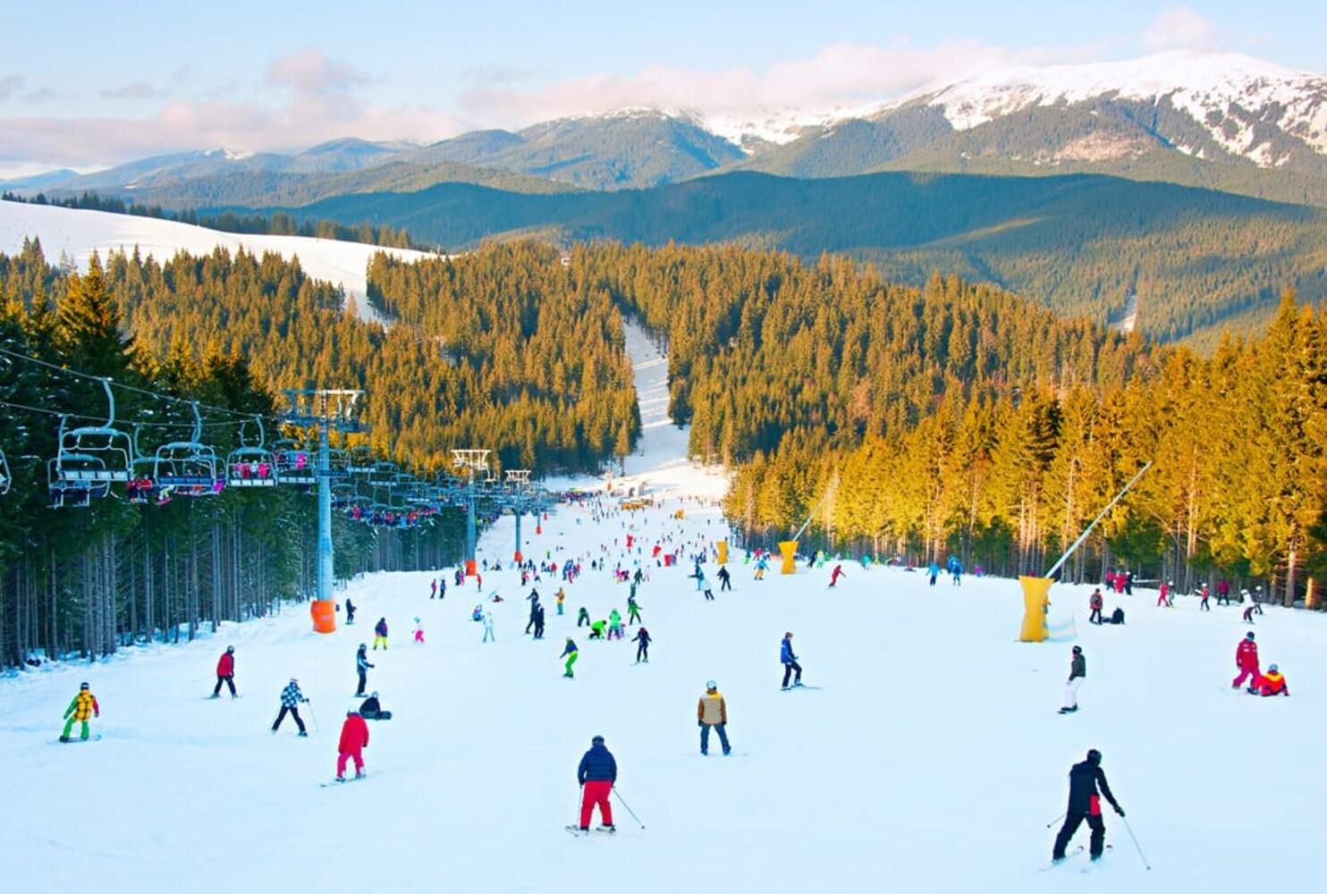 国内で滑走可能なスキー場は?レンタルは?