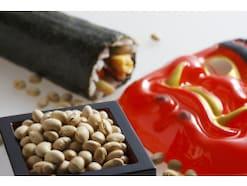 節分のいろは~由来・豆まきの仕方・鰯と柊の意味・恵方巻の食べ方