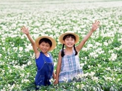 子供と北海道旅行!子連れ満喫おすすめ観光スポット10