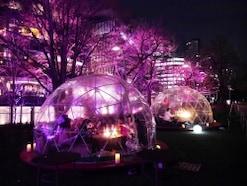 東京・大人の桜デートにおすすめなスポット5選!2018