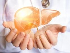 肝臓と糖尿病の関係…血糖値調節を行う重要な臓器