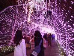 冬こそ江ノ島!冬は絶景・イベント盛りだくさん