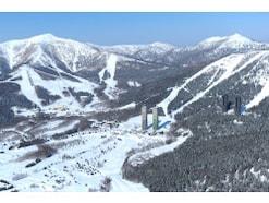スキーデビューに!「星野リゾート」冬の魅力