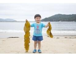 日本人は海藻を摂りすぎ?ヨウ素過剰は健康に悪いのか