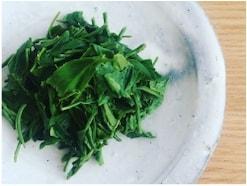 茶殻の簡単レシピ!お茶を丸ごと食べるメリットとは