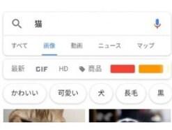 画像でGoogle検索する「類似画像検索」の方法を解説!