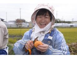 柿の栄養素・健康効果・カロリー・注意点