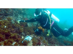 使えば使うほど海がきれいになる!?  海洋プラスチックごみは「アップサイクル」の時代へ