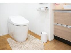 トイレ・玄関…家の中の様々な「マット類」はいる?いらない? 気になる洗濯頻度や汚れの落とし方