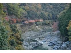 秋の紅葉のシーズンにもおすすめ! 絶景が魅力の嵯峨野観光鉄道トロッコ列車