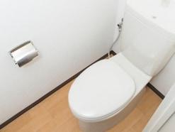 毎日のトイレ掃除!簡単・時短・節約・手間なし1分!