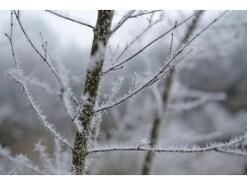 真冬のお葬式の寒さ対策、服装のマナーは?