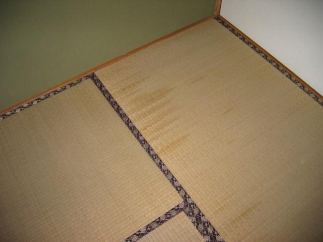 ▼畳のシミ対策はみかんの煮出し汁を活用!