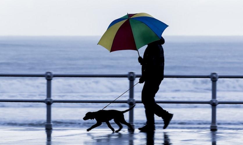 雨の日や夏の日の散歩は?