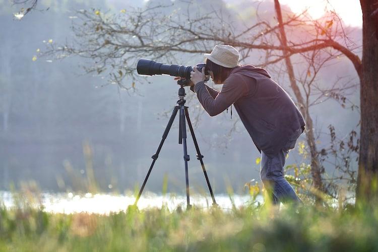 望遠レンズを使った撮影