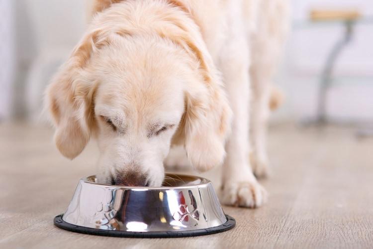 1、食事を食べやすく加工する