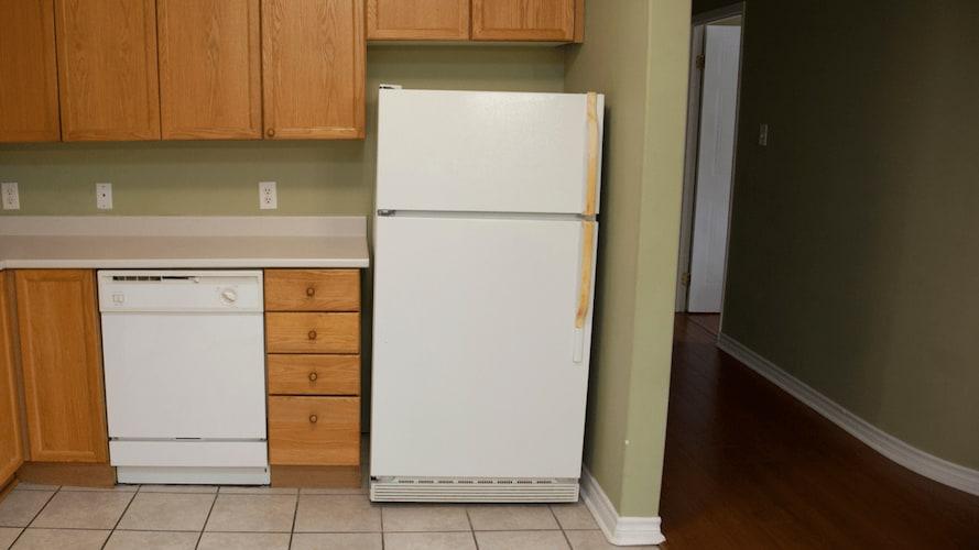 コバエ でる 冷蔵庫 死ん