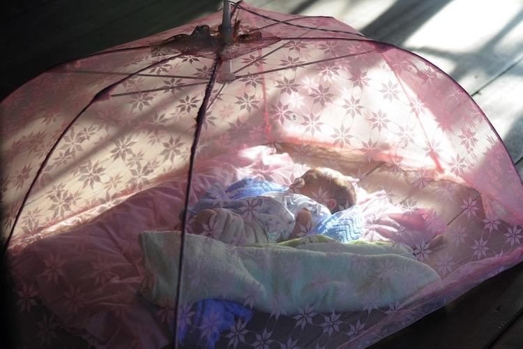 お部屋での蚊対策には蚊帳が便利!