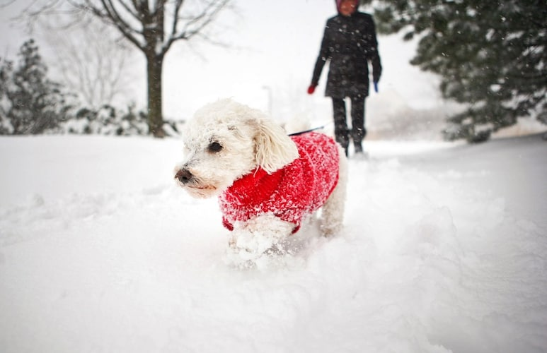 適温を下回る場合は冬服で防寒を