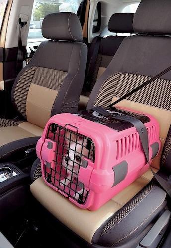 ・車内では運転に支障が出ないようキャリーバッグに入れて
