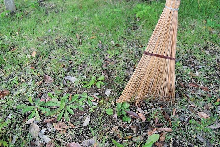駐車場・コンクリート|しっかりとゴミを集める「竹」「ヤシの葉脈」