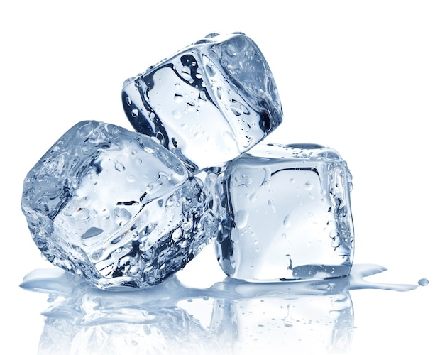 使う氷 ふわふわ派は「専用製氷」、シャリシャリ派は「ロックアイス」
