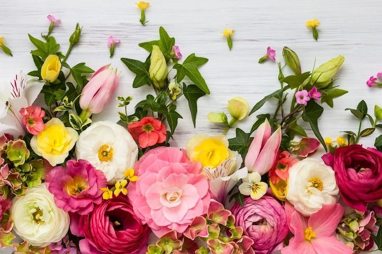 香り|果実や花々の女性らしい良い匂い