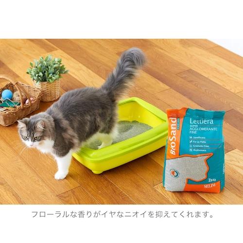 猫の好み 「臭い」や「触感」によって好みが別れることも!