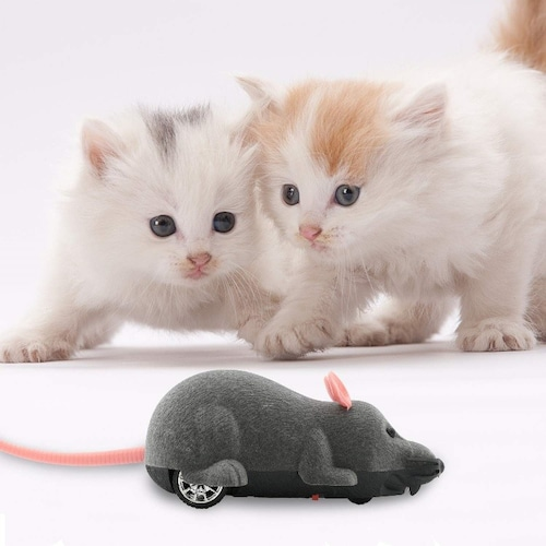 【猫用おもちゃの選び方2】蝶やネズミのデザイン、音が鳴るものが◎