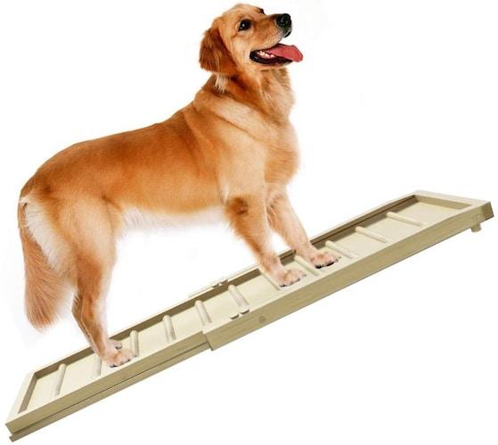 犬用スロープで愛犬が段差を楽に超えられる環境作りを