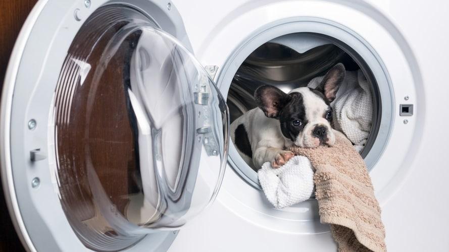 2、洗濯|水洗いできるものはお手入れがしやすく◎