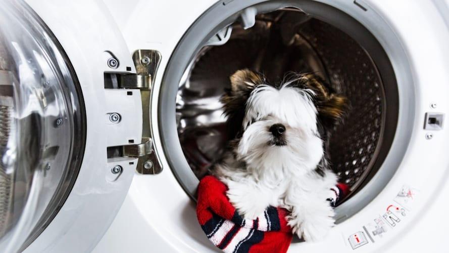 洗濯|水洗い可能なものや布カバー付きのものがおすすめ
