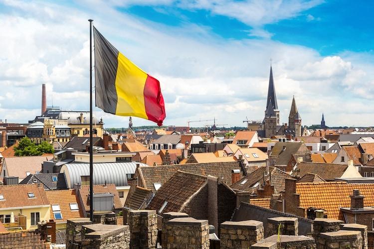 ベルジャンホワイト|ベルギー発祥