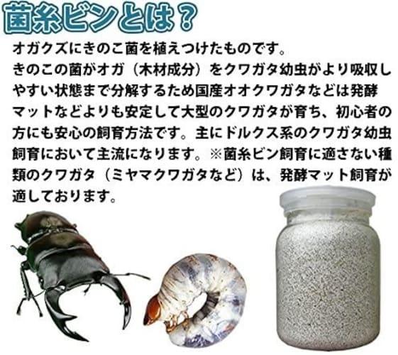 菌糸ビンとは?