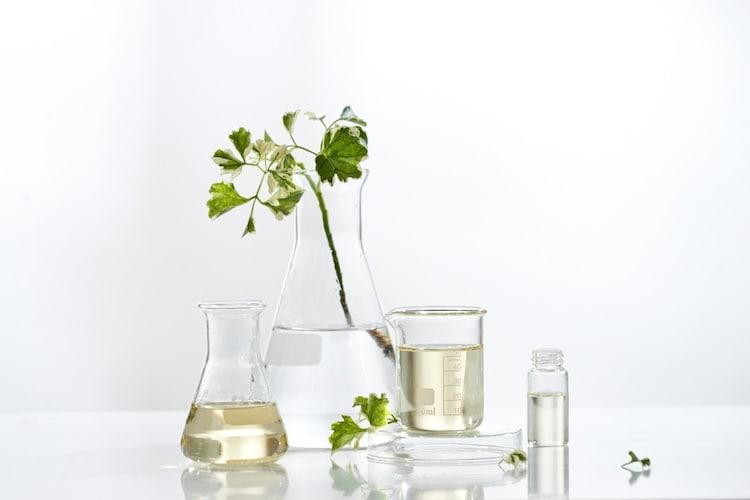 成分 ヒアルロン酸やセラミドなどの保湿成分に注目!
