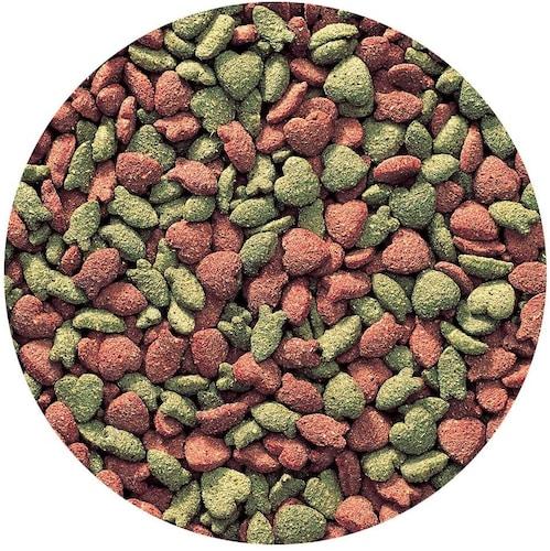 ペレット(人工飼料)|栄養バランスに優れた主食/固さ選びも重要