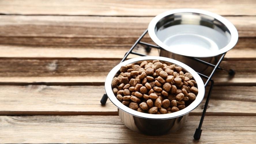 食事や水飲みは取り付けタイプの食器が便利