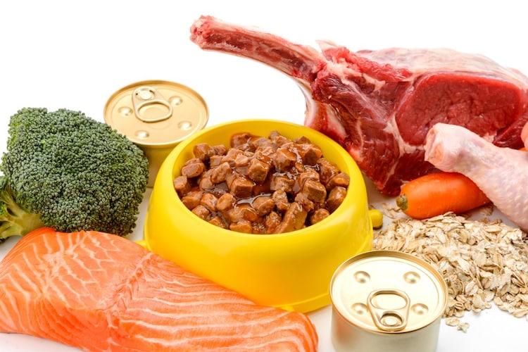主原料:肉か魚、食いつきの良いものでOK