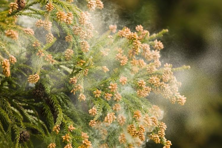 静電気・花粉防止|冬の寒い時期や花粉症の方に最適