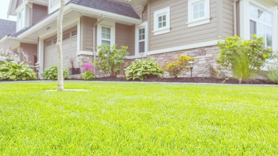 ▼芝生の上でくつろぐなら「ショートパイル」