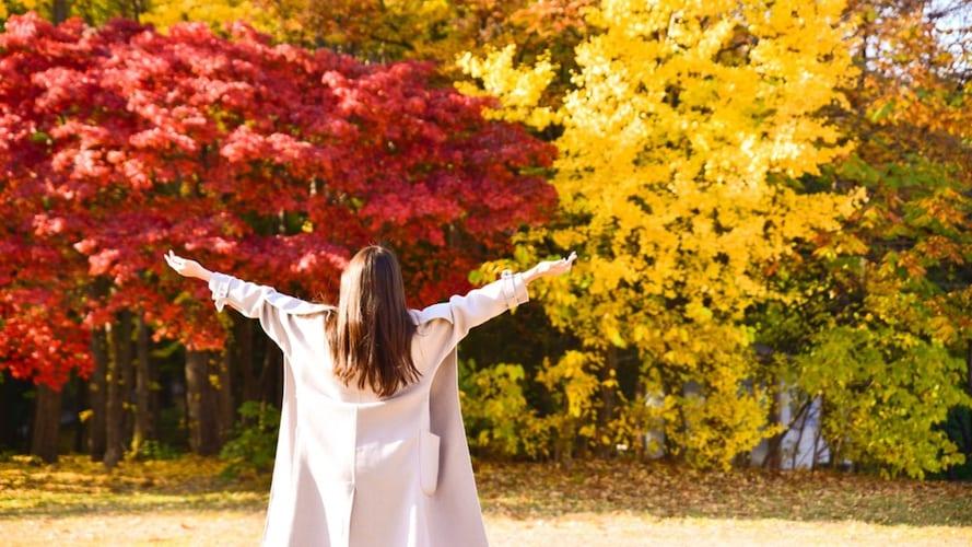 紅葉を見るトレンチコートを着た女性