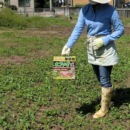 除草剤を散布するときの注意点