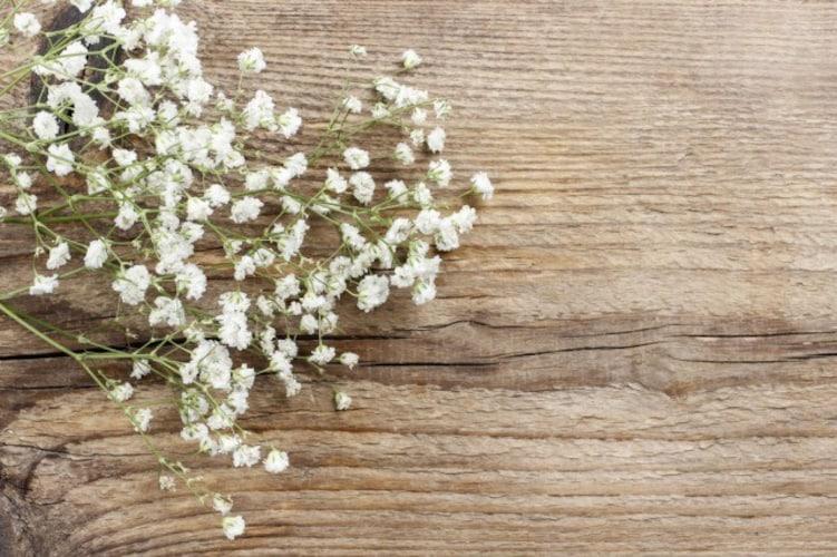 ▼小花:繊細で柔らかなイメージ!インテリアになじみやすい