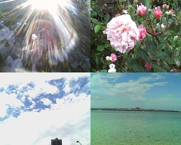 動画撮影|レトロな雰囲気の映像が撮れるタイプも