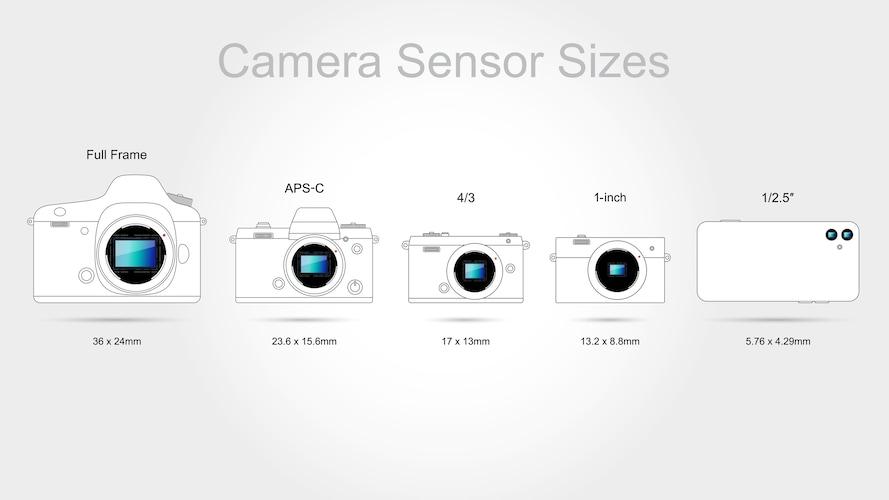 センサーサイズ|1.0型が主流、APS-Cやフルサイズモデルも!