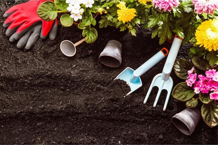 腐葉土とは?使い方や堆肥との違いをチェック!